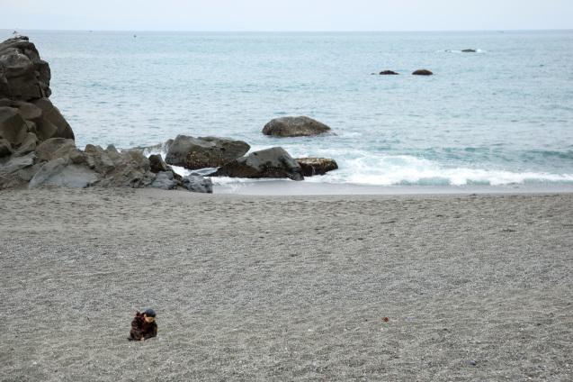 高知の旅:その2〜桂浜で龍馬アニキに会う_e0369736_21131005.jpg