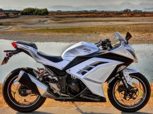 Kawasaki Ninja XIV_b0049658_16505617.jpg