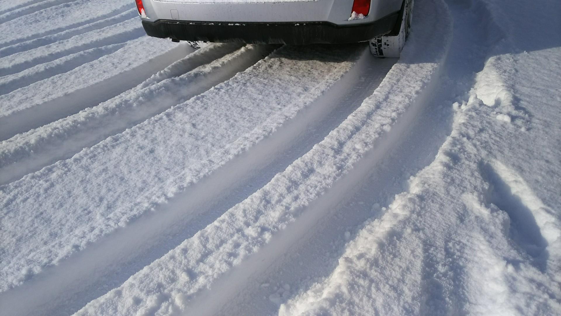 雪・・・降りました。_b0343293_10541602.jpg