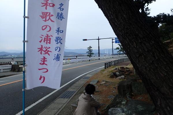 名勝和歌の浦クリーンアップ 玉津島神社_c0367107_13470087.jpg
