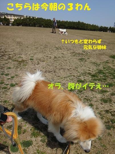 f0121712_01063649.jpg