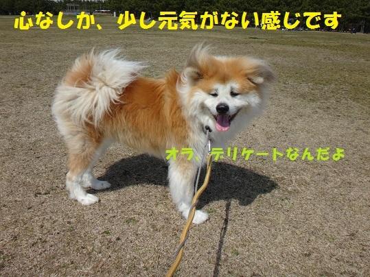 f0121712_01093157.jpg