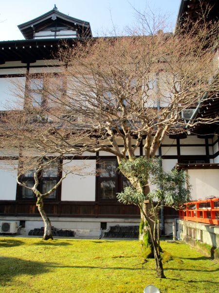春の奈良ホテル_d0145934_14202111.jpg
