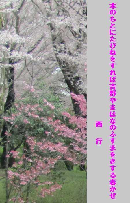 f0117041_05144910.jpg