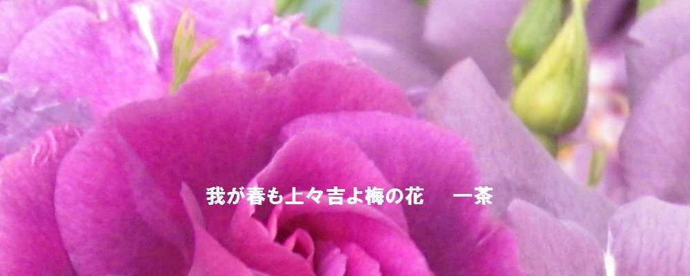 f0117041_14401684.jpg