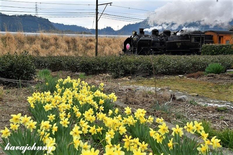 大井川の春はまだ遠し_c0173762_18085995.jpg