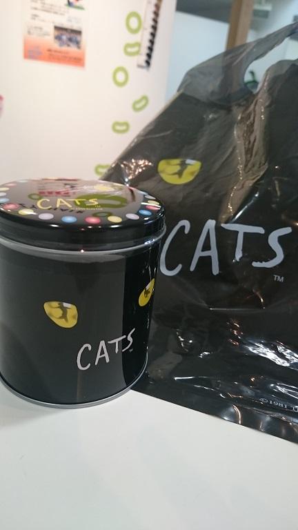 cats_f0172281_6414998.jpg