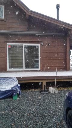 雪降ってますよ_f0185784_13243388.jpg