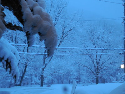 27日 月曜  雪  0℃_f0210811_05551667.jpg