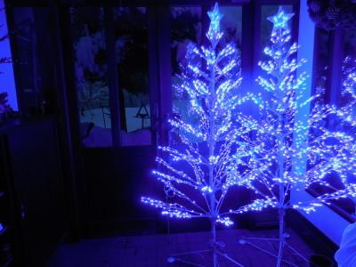 27日 月曜  雪  0℃_f0210811_05555138.jpg