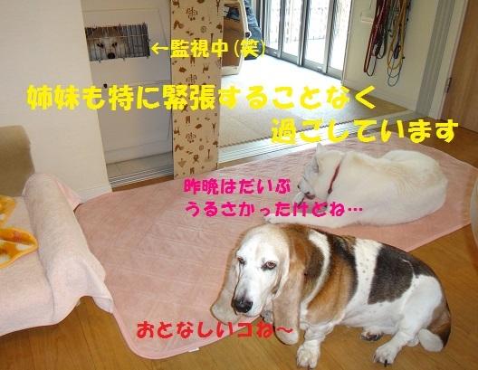 f0121712_15501082.jpg
