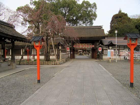 平野神社 桃さくら_e0048413_21080875.jpg