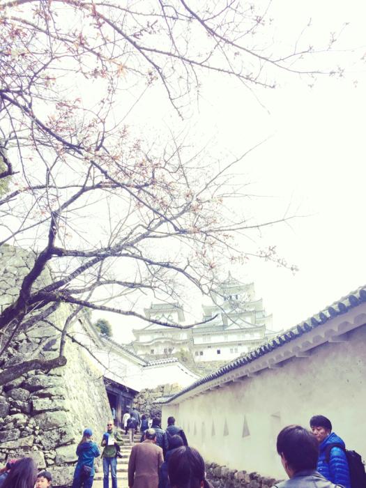 そして姫路城へ。_c0175022_19392281.jpg