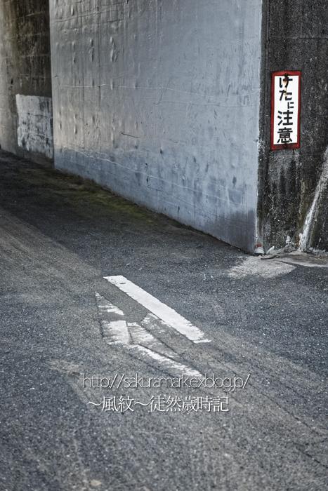 「けたに注意」の看板がある風景。_f0235723_18524756.jpg