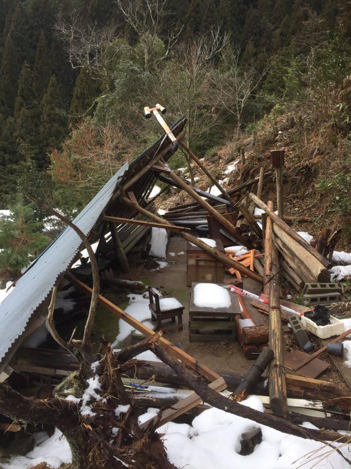 理想の森の小屋が積雪で倒壊→再建へ_e0032609_10222095.jpg