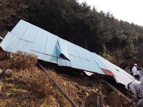 理想の森の小屋が積雪で倒壊→再建へ_e0032609_10272739.jpg