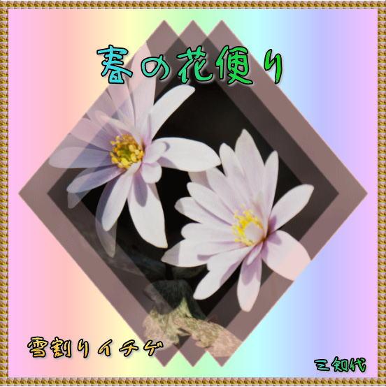 d0155321_1123373.jpg