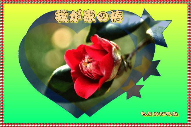 d0155321_11260977.jpg