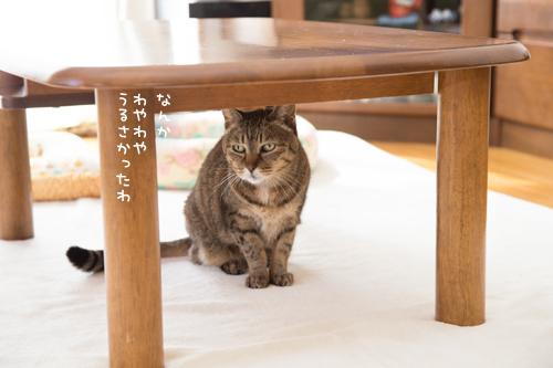 新しいソファがやってきた☆搬入編_d0355333_09103574.jpg