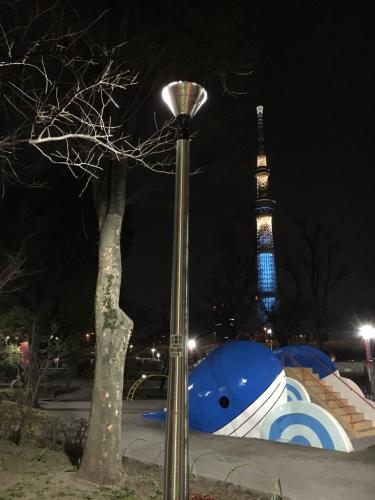 公園電灯からの光線をカット_d0011635_15390605.jpg
