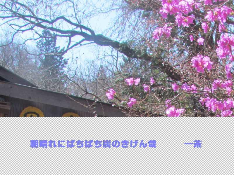 f0117041_07135301.jpg