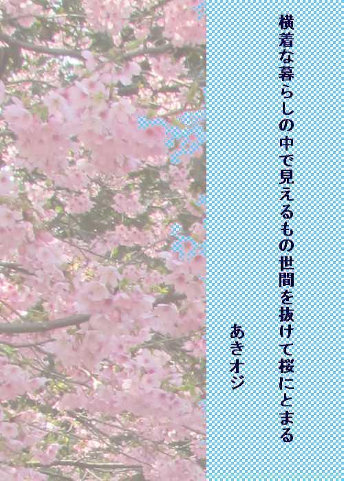 f0117041_16442862.jpg