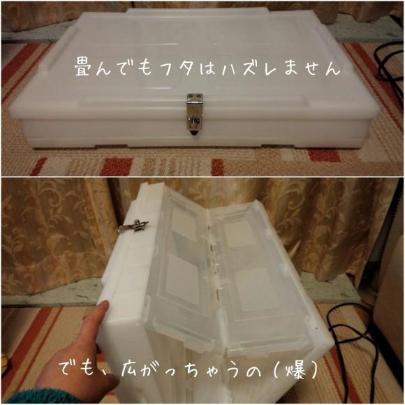 b0306158_19531233.jpg