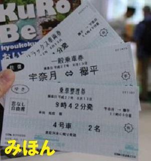 アルペンルートとトロッコ電車の違い〜乗車券の購入〜_a0243562_09163675.jpg