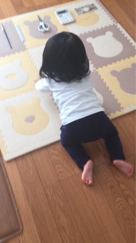 1歳になりました(^^)_b0353878_22380574.jpg