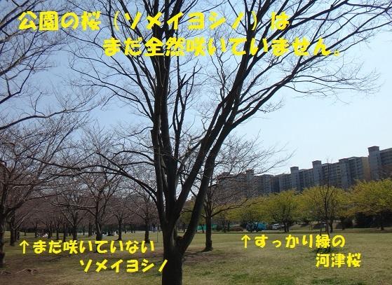 f0121712_07410351.jpg