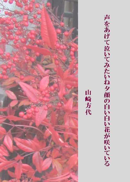 f0117041_20365004.jpg