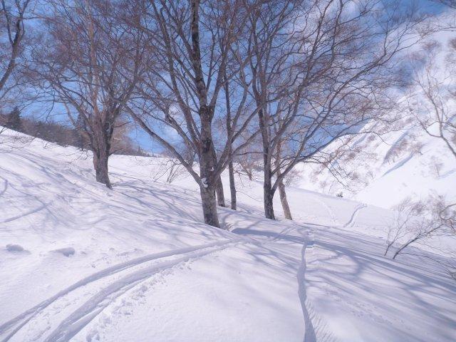 【滑走レポ 2017.3.29】 今日の狙いは三角!いざ、BCエリアへ!!@かぐら_e0037849_21264820.jpg