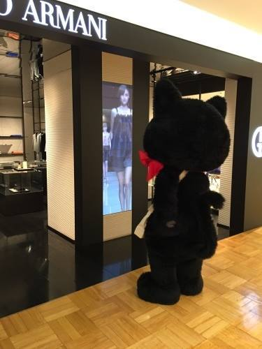 のら猫クロッチ x PJC 【日本橋三越本店 本館3階】_f0193056_19001679.jpg