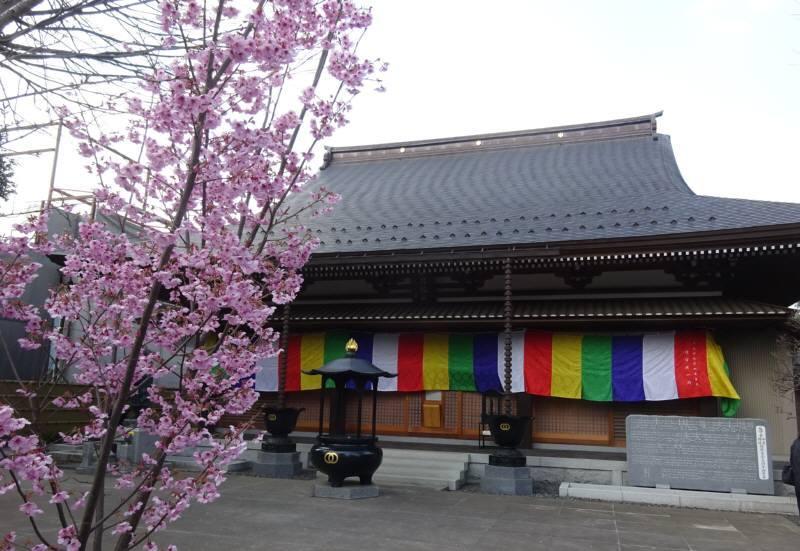 天神町の延命寺の大般若会_f0059673_21540219.jpg