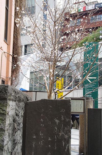 3月29日(水)今日の渋谷109前交差点_b0056983_21183119.jpg