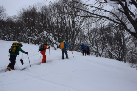 2017年1月22日塩谷丸山岳を滑る_c0242406_18463416.jpg