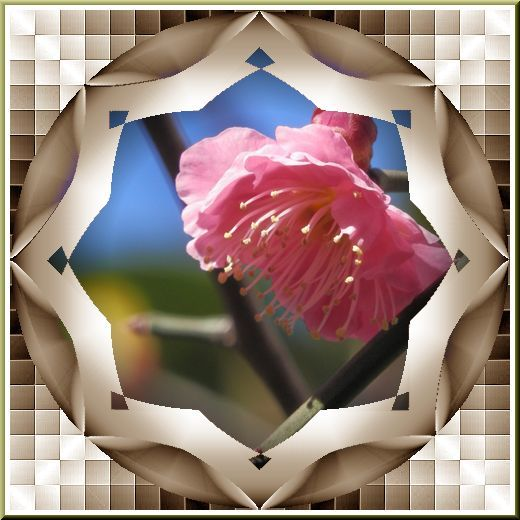 b0133759_13353608.jpg