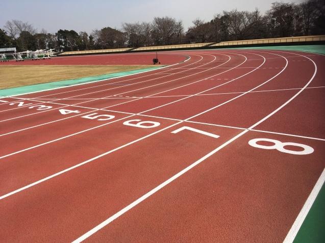 川越運動公園陸上競技場!間もなくオープンです!!_d0165682_13430594.jpg