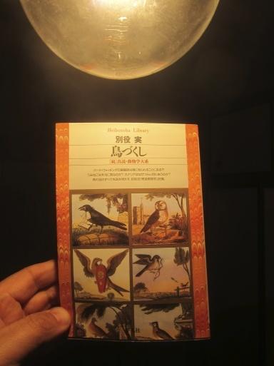 鳥の遊び、木琴の上で。_e0074793_17571634.jpg