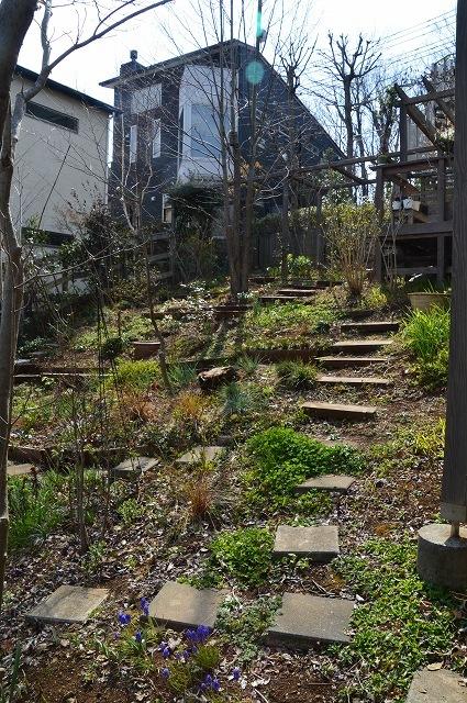 3月29・31日の庭。_c0124100_16342789.jpg