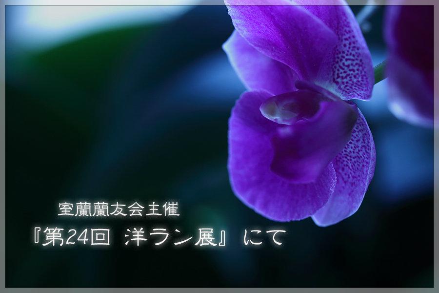 e0235910_05363212.jpg