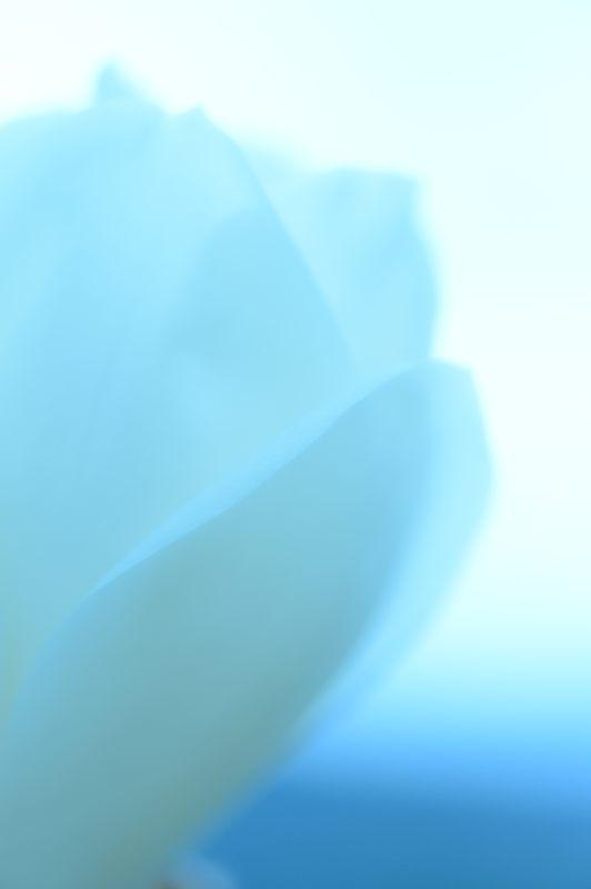 f0032011_19454489.jpg