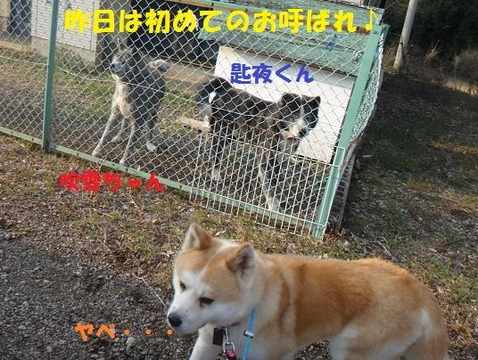 f0121712_09364254.jpg