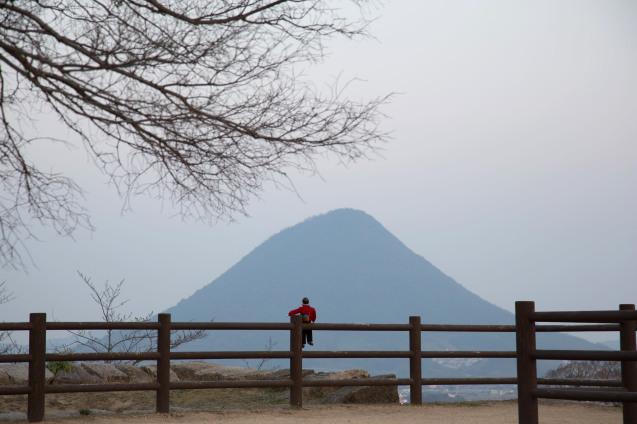丸亀城と美味しいうどん_e0369736_00094844.jpg