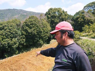 山鹿のみかん 社方園 山を開いて新たなみかんの果樹を植える!夢を追う匠の話!(その1)_a0254656_18311490.jpg