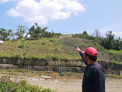 山鹿のみかん 社方園 山を開いて新たなみかんの果樹を植える!夢を追う匠の話!(その1)_a0254656_19373850.jpg