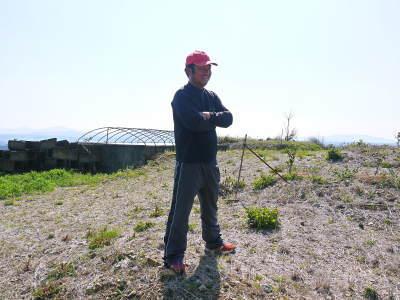 山鹿のみかん 社方園 山を開いて新たなみかんの果樹を植える!夢を追う匠の話!(その1)_a0254656_19445261.jpg