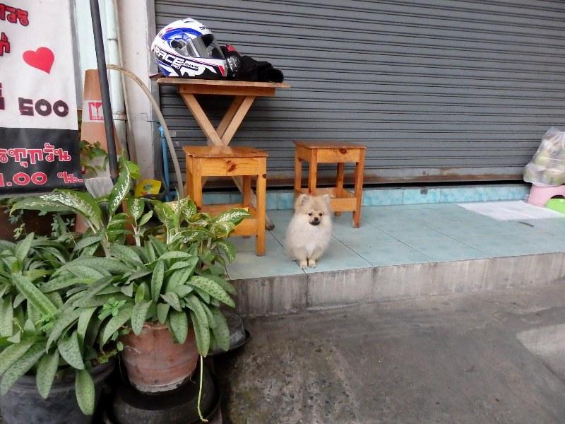 バンコク、だらだら散歩_d0103566_1530865.jpg