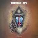 進化系北欧デジタル・シンフォが更に進化して、BROTHER APEが通常バンド作をリリース?!_c0072376_15092956.jpg