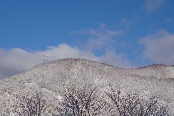 春の雪_d0162994_09272240.jpg